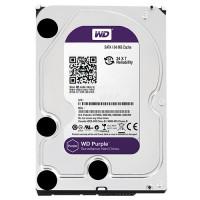 Hard disk 1Tb WD WD10PURX 1000GB
